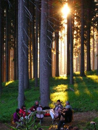 bosco che suona predazzoblog.it  Predazzo, il musicista Ezio Bosso ha scelto il suo abete nel «Bosco che suona»