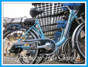 comune di predazzo bici elettriche bike sharing predazzo blog 1 300x229 FiemmE motion il turismo del futuro senza automobile inizia dalla Valle di Fiemme
