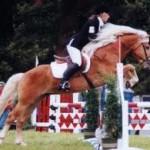 cavallo 150x150 Predazzo, le foto dei Concorsi Ippici Nazionali 2010