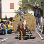 predazzo desmontegada 2010 ph Elvis GP predazzo blog10 150x150 Predazzo, le foto della Desmontegada 2010. Foto by Elvis – predazzoblog.it