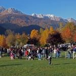 predazzo festa a sei zampe 5 ph luca dellantonio predazzoblog 150x150 Predazzo, successo per la Festa a Sei Zampe. Le foto.