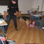 controllo carabinieri scuole Predazzo blog1 225x3001 150x150 Dagli assessori alla sanità di Fiemme, un televisore al day hospital oncologico di Cavalese