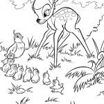 bambi uccellini 150x150 3 Disegni da colorare per i nostri bimbi