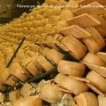 Emilia 10.6.2012 ph Roberto Dallabona Predazzo blog 16 150x150 Fiemme per lEmilia, le foto della consegna degli aiuti ai terremotati