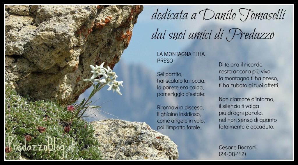 stella alpina per poesia 1024x569 23 agosto 2013, una targa sul Sassolungo per Danilo Tomaselli