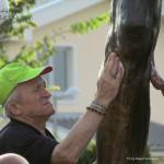 medjugorje 2012 by orizzonti di riflessione ph mauro morandini92 150x150 Predazzo   Medjugorje 2012   Fotogallery