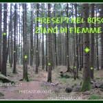 presepi nel bosco ziano fiemme ph mauro morandini predazzo blog CORNICE 150x150 Tesero, danneggiato il presepio in grandezza naturale: Adesso davvero non se ne può più.