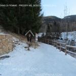 presepi nel bosco ziano fiemme ph mauro morandini predazzo blog1 150x150 Le foto dei Presepi nel Bosco di Ziano di Fiemme