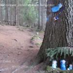 presepi nel bosco ziano fiemme ph mauro morandini predazzo blog18 150x150 Le foto dei Presepi nel Bosco di Ziano di Fiemme