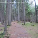 presepi nel bosco ziano fiemme ph mauro morandini predazzo blog22 150x150 Le foto dei Presepi nel Bosco di Ziano di Fiemme