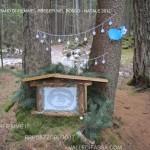 presepi nel bosco ziano fiemme ph mauro morandini predazzo blog23 150x150 Le foto dei Presepi nel Bosco di Ziano di Fiemme