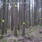 presepi nel bosco ziano fiemme ph mauro morandini predazzo blog29 150x150 Le foto dei Presepi nel Bosco di Ziano di Fiemme