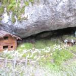 presepi nel bosco ziano fiemme ph mauro morandini predazzo blog35 150x150 Le foto dei Presepi nel Bosco di Ziano di Fiemme