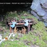 presepi nel bosco ziano fiemme ph mauro morandini predazzo blog36 150x150 Le foto dei Presepi nel Bosco di Ziano di Fiemme