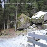 presepi nel bosco ziano fiemme ph mauro morandini predazzo blog37 150x150 Le foto dei Presepi nel Bosco di Ziano di Fiemme