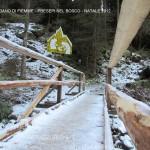 presepi nel bosco ziano fiemme ph mauro morandini predazzo blog53 150x150 Le foto dei Presepi nel Bosco di Ziano di Fiemme