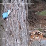 presepi nel bosco ziano fiemme ph mauro morandini predazzo blog6 150x150 Le foto dei Presepi nel Bosco di Ziano di Fiemme