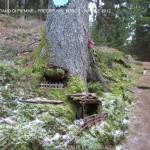 presepi nel bosco ziano fiemme ph mauro morandini predazzo blog60 150x150 Le foto dei Presepi nel Bosco di Ziano di Fiemme