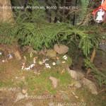 presepi nel bosco ziano fiemme ph mauro morandini predazzo blog83 150x150 Le foto dei Presepi nel Bosco di Ziano di Fiemme