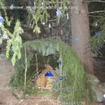 presepi nel bosco ziano fiemme ph mauro morandini predazzo blog88 150x150 Le foto dei Presepi nel Bosco di Ziano di Fiemme