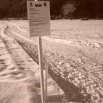 Nuovo percorso nella piana di Predazzo per Nordic Walking Winter NW Ciaspole e Pedoni predazzoblog1 150x150 Nuovo percorso outdoor nella piana di Predazzo per Nordic Walking   Winter NW   Ciaspole e Pedoni