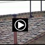 vaticano web cam comignolo streaming piazza san pietro roma player vatican papa 150x150 Conclave, diretta streaming tv dal Vaticano   la webcam del comignolo e Piazza San Pietro in attesa della fumata bianca