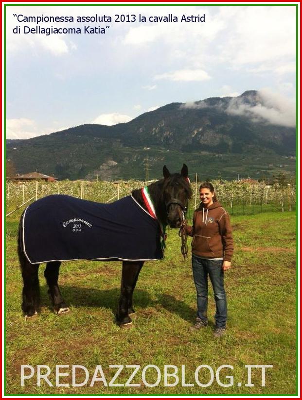 cavalla norica astrid 1 predazzo blog Predazzo ora ha la sua Campionessa Norica