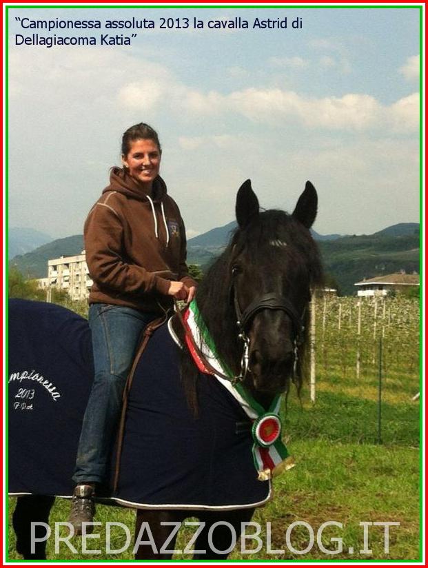 cavalla norica astrid predazzo blog