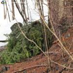 ritrovamento zaino nei boschi di predazzo 3 aprile20132 150x150 Zaino da trekking rinvenuto nei boschi di Predazzo
