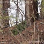 ritrovamento zaino nei boschi di predazzo 3 aprile201324 150x150 Zaino da trekking rinvenuto nei boschi di Predazzo