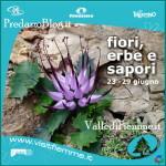 fiori erbe sapori predazzo fiemme 2013 150x150 Predazzo e Bellamonte tra fiori erbe sapori   scarica Ebook