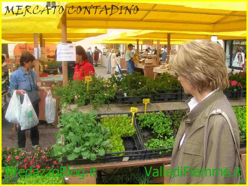 mercato contadino fiemme