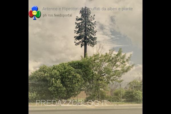 ripetitori e antenne cammuffati da alberi e piante predazzo blog2