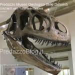 """predazzo museo geologico delle dolomiti dinomiti rettili fossili delle dolomiti1 150x150 Predazzo le foto della mostra """"DinoMiti, rettili fossili e dinosauri nelle Dolomiti"""""""