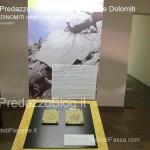 """predazzo museo geologico delle dolomiti dinomiti rettili fossili delle dolomiti17 150x150 Predazzo le foto della mostra """"DinoMiti, rettili fossili e dinosauri nelle Dolomiti"""""""