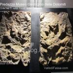 """predazzo museo geologico delle dolomiti dinomiti rettili fossili delle dolomiti20 150x150 Predazzo le foto della mostra """"DinoMiti, rettili fossili e dinosauri nelle Dolomiti"""""""