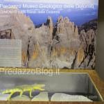 """predazzo museo geologico delle dolomiti dinomiti rettili fossili delle dolomiti22 150x150 Predazzo le foto della mostra """"DinoMiti, rettili fossili e dinosauri nelle Dolomiti"""""""