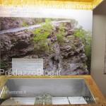 """predazzo museo geologico delle dolomiti dinomiti rettili fossili delle dolomiti38 150x150 Predazzo le foto della mostra """"DinoMiti, rettili fossili e dinosauri nelle Dolomiti"""""""