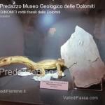 """predazzo museo geologico delle dolomiti dinomiti rettili fossili delle dolomiti4 150x150 Predazzo le foto della mostra """"DinoMiti, rettili fossili e dinosauri nelle Dolomiti"""""""