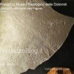 """predazzo museo geologico delle dolomiti dinomiti rettili fossili delle dolomiti41 150x150 Predazzo le foto della mostra """"DinoMiti, rettili fossili e dinosauri nelle Dolomiti"""""""