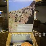 """predazzo museo geologico delle dolomiti dinomiti rettili fossili delle dolomiti42 150x150 Predazzo le foto della mostra """"DinoMiti, rettili fossili e dinosauri nelle Dolomiti"""""""