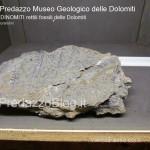 """predazzo museo geologico delle dolomiti dinomiti rettili fossili delle dolomiti43 150x150 Predazzo le foto della mostra """"DinoMiti, rettili fossili e dinosauri nelle Dolomiti"""""""