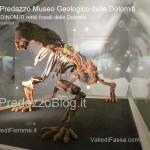 """predazzo museo geologico delle dolomiti dinomiti rettili fossili delle dolomiti46 150x150 Predazzo le foto della mostra """"DinoMiti, rettili fossili e dinosauri nelle Dolomiti"""""""