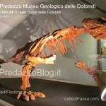 """predazzo museo geologico delle dolomiti dinomiti rettili fossili delle dolomiti47 150x150 Predazzo le foto della mostra """"DinoMiti, rettili fossili e dinosauri nelle Dolomiti"""""""