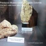 """predazzo museo geologico delle dolomiti dinomiti rettili fossili delle dolomiti5 150x150 Predazzo le foto della mostra """"DinoMiti, rettili fossili e dinosauri nelle Dolomiti"""""""