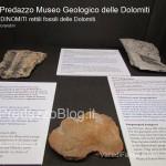 """predazzo museo geologico delle dolomiti dinomiti rettili fossili delle dolomiti55 150x150 Predazzo le foto della mostra """"DinoMiti, rettili fossili e dinosauri nelle Dolomiti"""""""