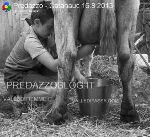 predazzo catanauc 2013 ph lorenzo delugan predazzoblog34 300x275 predazzo catanauc 2013 ph lorenzo delugan predazzoblog34