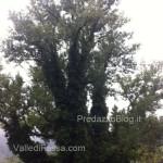 a roma a piedi da fassa19  150x150 In cammino a piedi dalle Dolomiti di Fassa fino a Roma da Papa Francesco