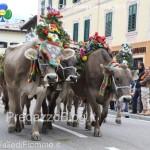 predazzo desmontegada mucche 2013 predazzoblog by Lorenzo Delugan18 150x150 Predazzo, la fotogallery della Desmontegada 2013