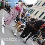 predazzo desmontegada mucche 2013 predazzoblog by Lorenzo Delugan20 150x150 Predazzo, la fotogallery della Desmontegada 2013